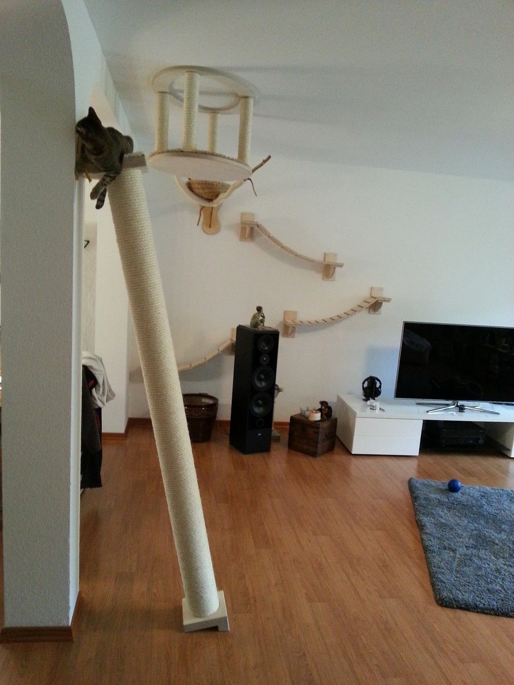 katzenm bel kletters ule sisal kratzbaum stabil langlebig katzengerecht katzenm bel. Black Bedroom Furniture Sets. Home Design Ideas