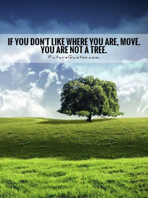 If You Dont Like Where You Are Move You Are Not A Tree Picture