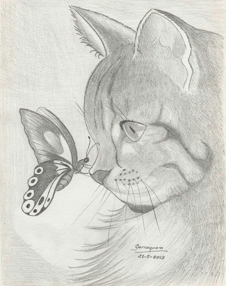 Pin De Yanady Cruz En Creativo Pinterest Pencil Drawings