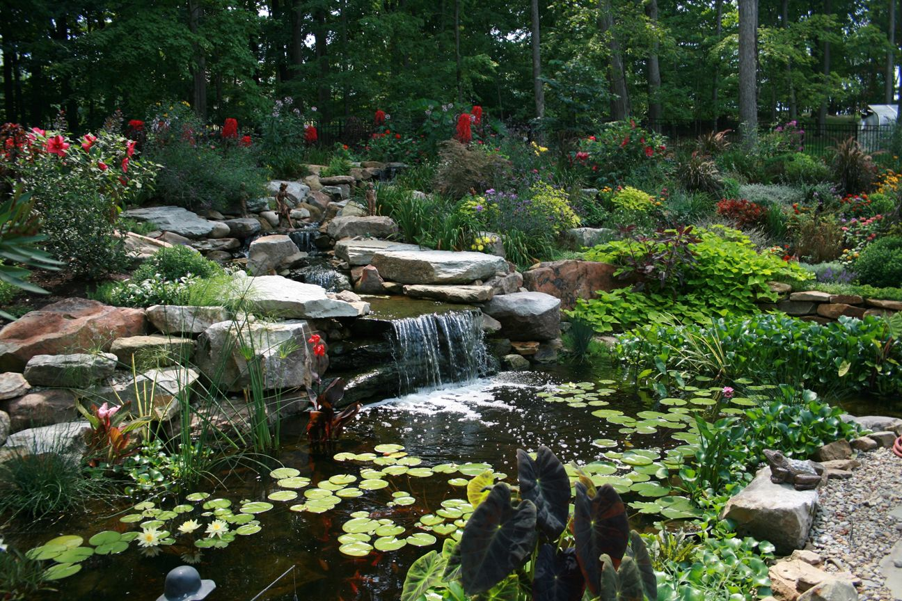 Pond installation waterfalls pondless waterfalls for Garden pond installers
