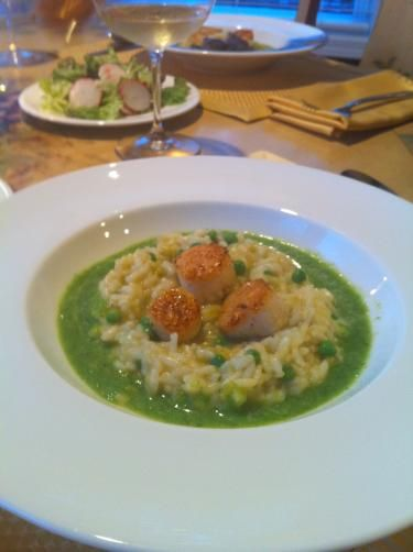 Green pea risotto with scallops