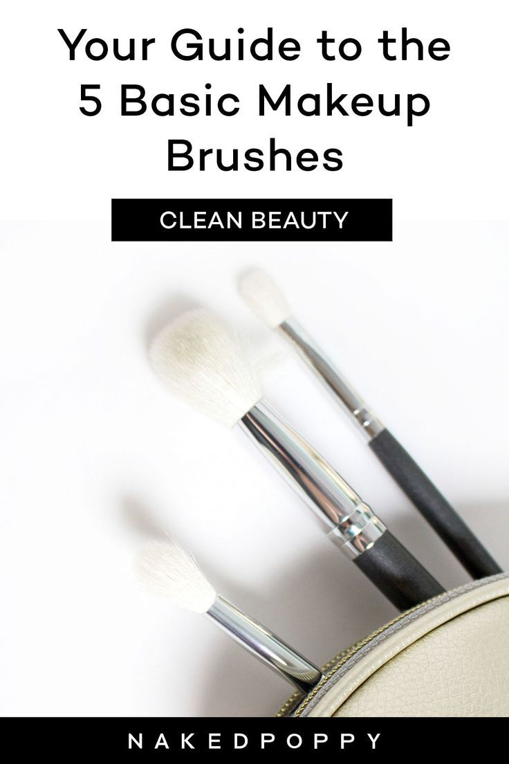 Photo of makeup brushes guide for beginners