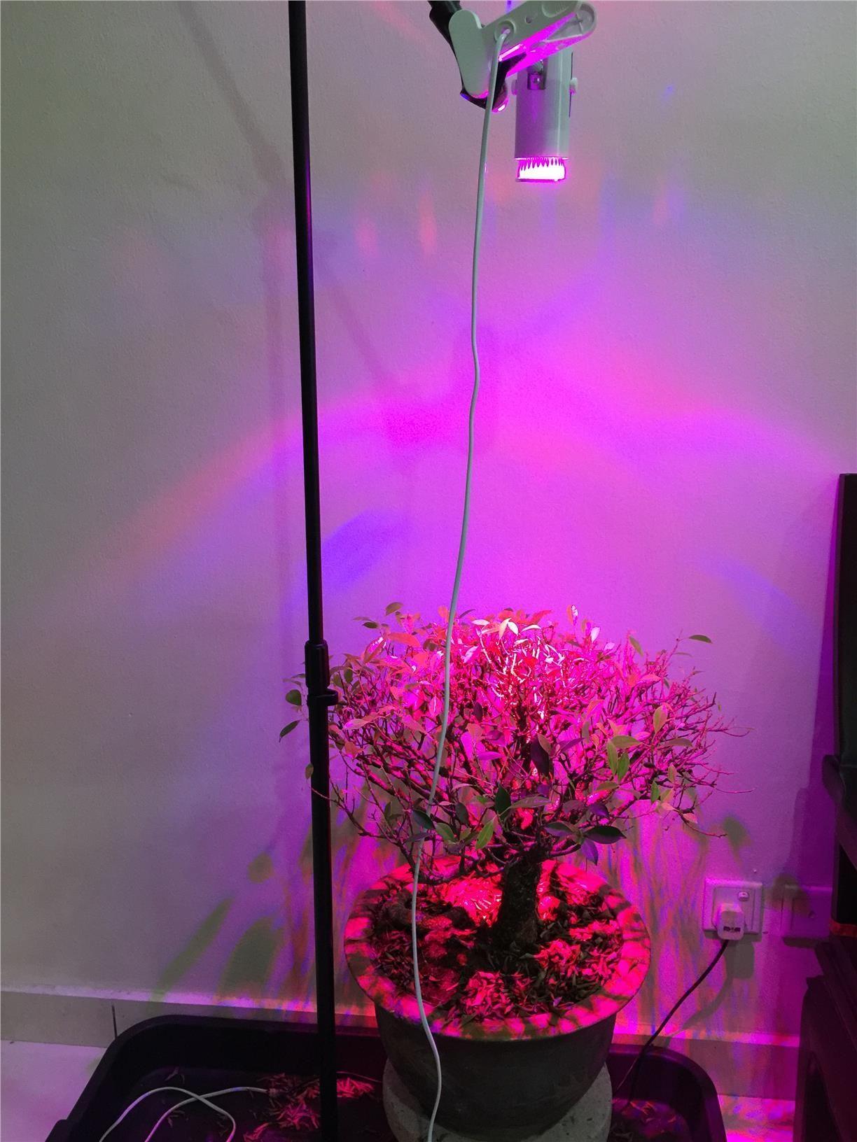 Tesler 200 Watt Indoor Plant Led Grow Light