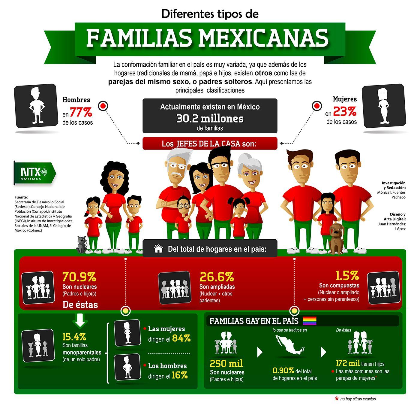 Diferentes Tipos De Familias Mexicanas Aqui Te Presentamos Las Clasificaciones Infografia