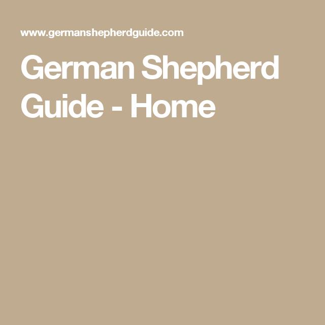 German Shepherd Guide - Home