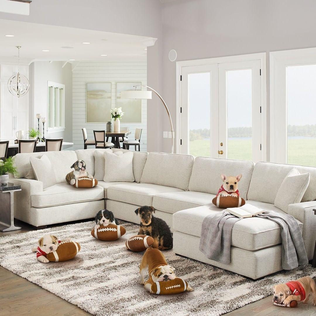 La Z Boy On Instagram Ready Set Pup Lzbhome Lazboy Instahome Sectionals Petsofinstagram Lazy Boy Furniture Home La Z Boy [ 1080 x 1080 Pixel ]