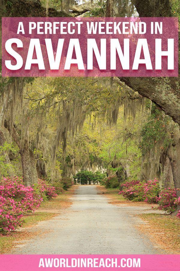 3 Tage in Savannah: Planen Sie ein langes Wochenende in Savannah, Georgia. • Eine Welt in Reichweite   – USA Travel