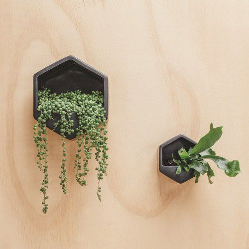 Hexagon Wall Planter By George Co Wall Planter Large Planters Planters
