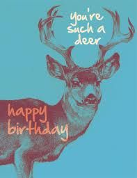 Happy Birthday Deer Meme : happy, birthday, Happy, Birthday, Paula!, General, Birthday,, Greetings,
