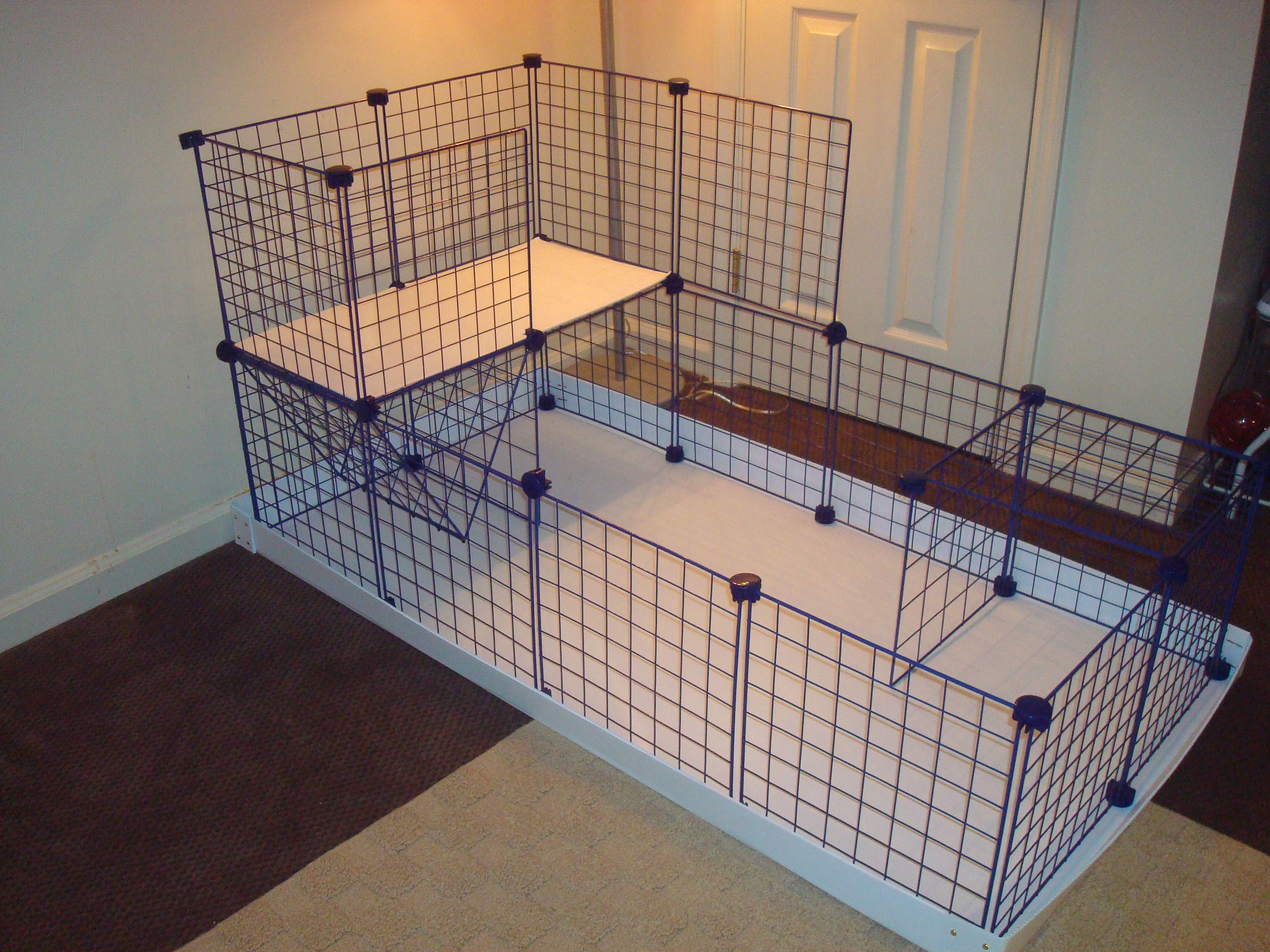 Simple c c cage pinteres for Guinea pig cage for 3