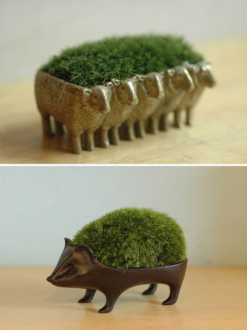 Want Little Moss Creatures is part of Plants - Aren't these guys the cutest  I don't know a lot about them but they seem to be from a Japanese company called Sinjina and I definitely want them!  Images Ginkgo Telegraph