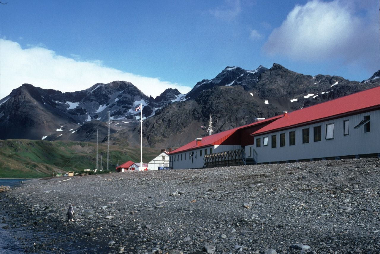 Image Result For King Edward Point Research Station