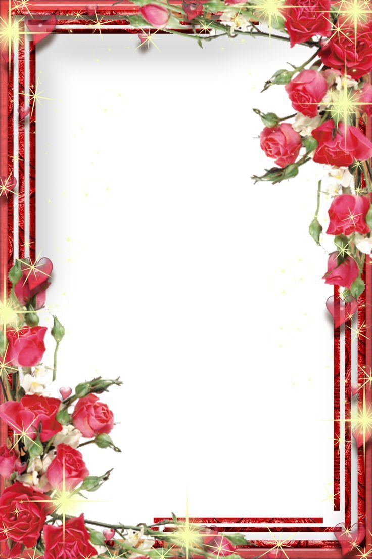 images of certificate borders Google Search Floral