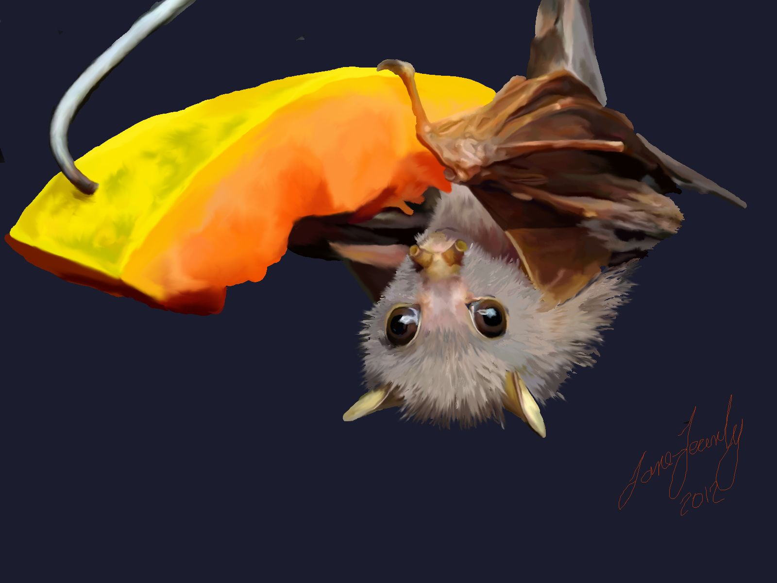 Art, Baby bat eating melon | Baby bats, Cute bat, All bat