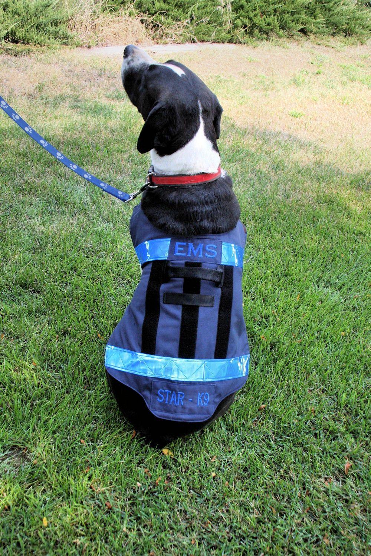 EMS Firefighter Service Dog Vest