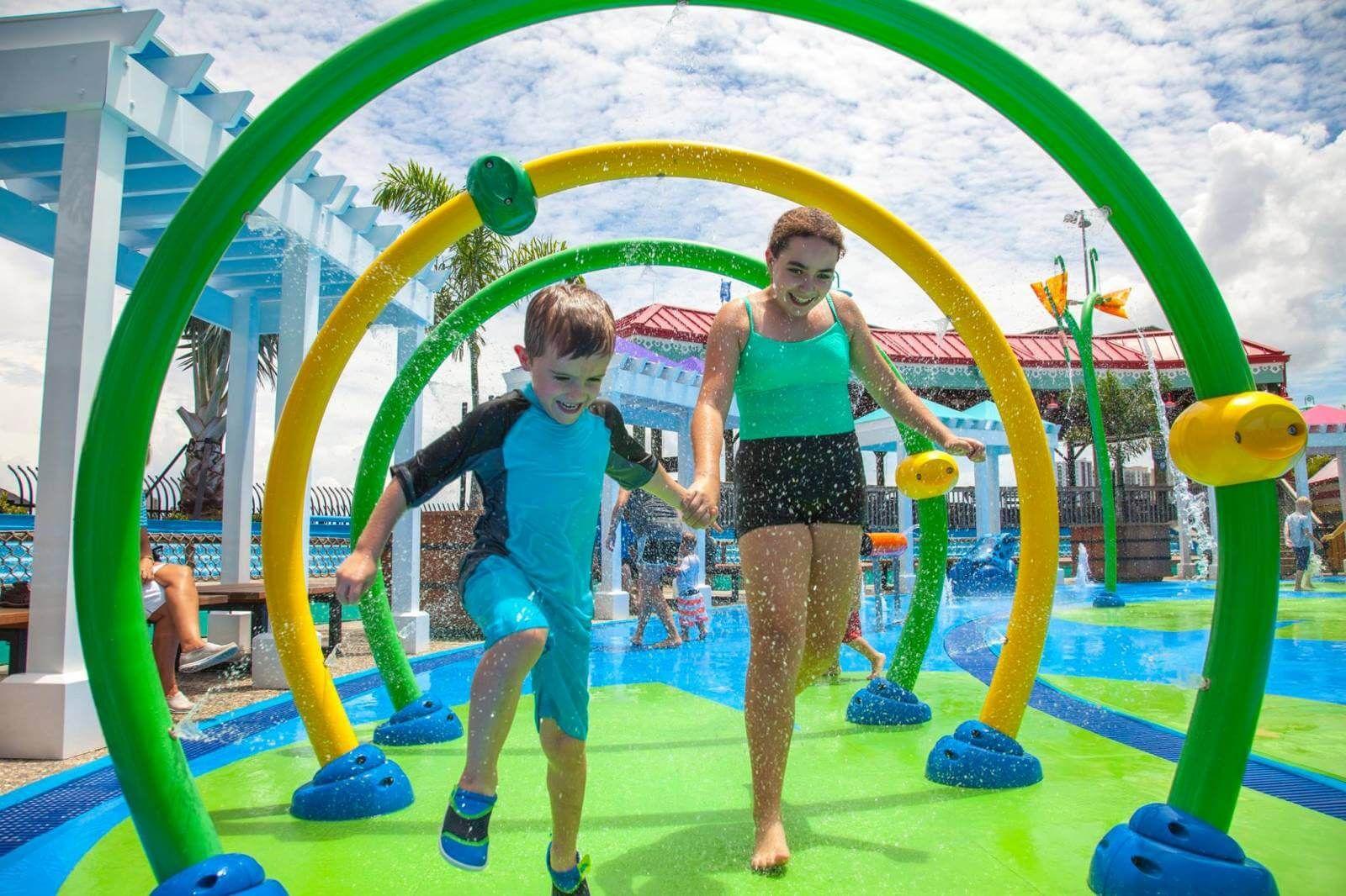A Sarasota Day Trip To The Florida Aquarium Sarasota Florida Day