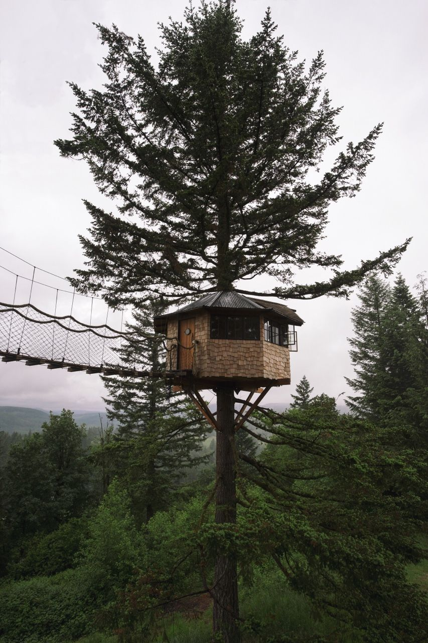 The Cinder Cone Treehouse Cabin Large Backyard Landscaping