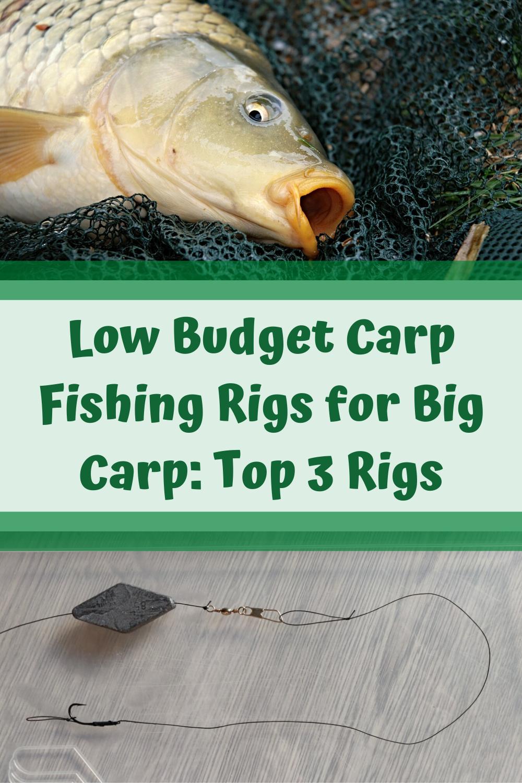Low Budget Carp Fishing Rigs For Big Carp Top 3 Rigs Carp Fishing Rigs Carp Fishing Fishing Rigs