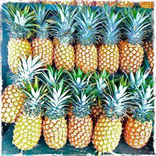 Nothing like the taste of a freshly picked Maui sweet pineapple!
