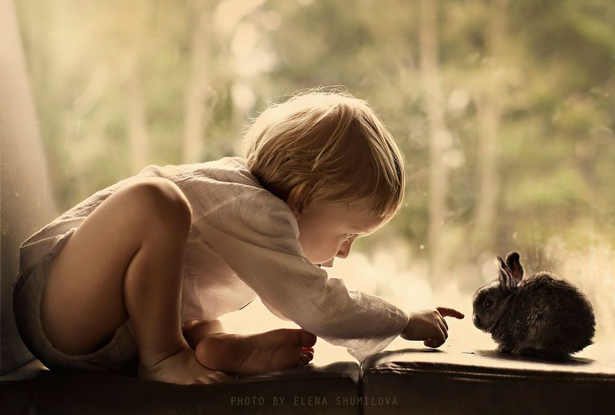 New Magical Photos By Elena Shumilova Who Photographs Her Two Kids With Animals On Farm Bored Panda