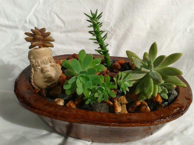 Hermoso mini jardin de suculentas mini jardines mi creacion for Jardin zen miniature