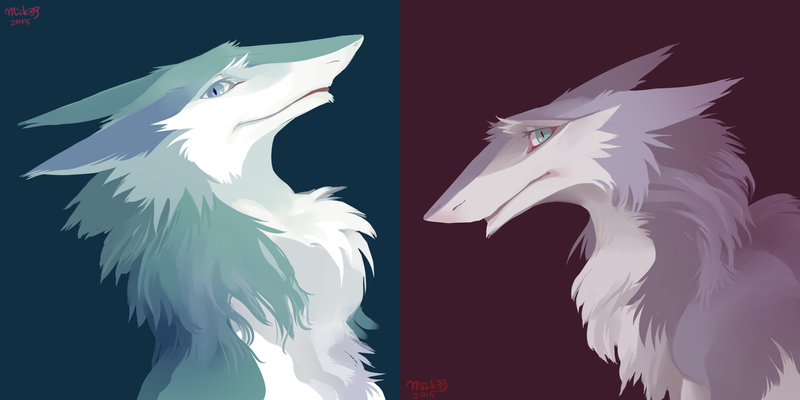 How to draw a wolf in stages