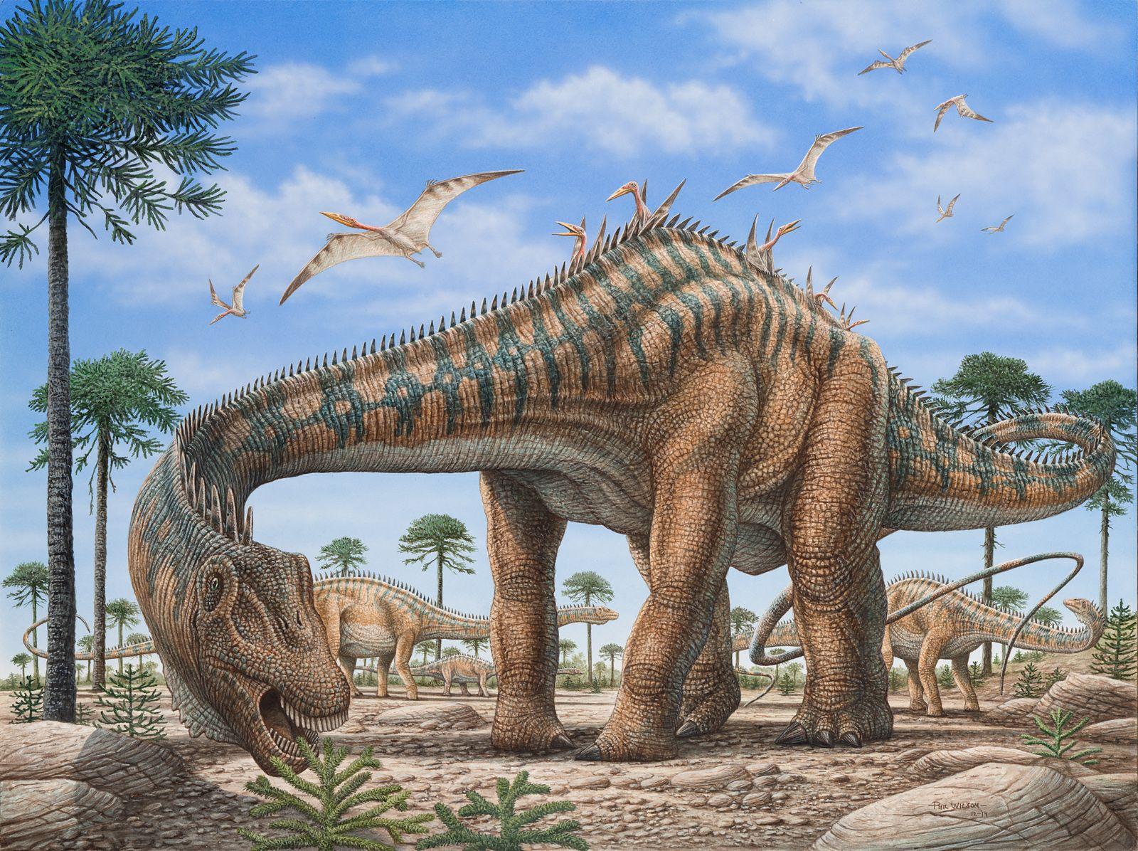 diplodocus acrylic on illustration board phil wilson