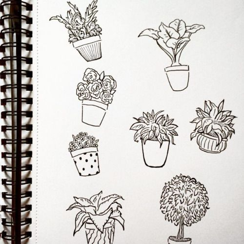 Pin By Maurisha On Things To Draw When Bored Pinterest