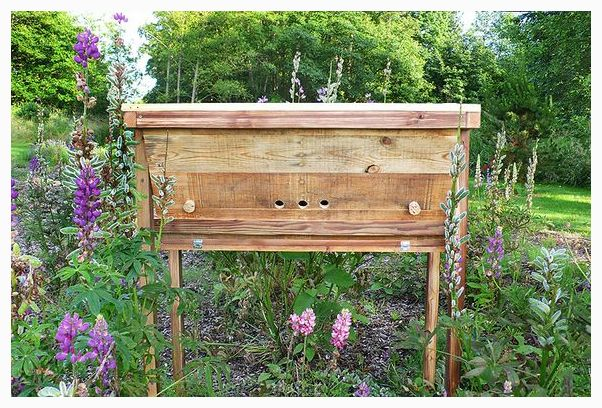 Bee, DIY, Hive, Pallet, Project, Reclaimed, Recycled, Repurposed, Salvage,  Shipping, Top Bar, Upcycled, Wood | Beekeeping With Top Bar Bee Hives |  Pinterest ...