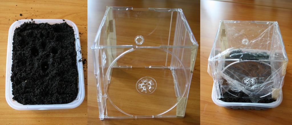 mini gew chshaus selber bauen 4 diy ideen mit anleitung mini gew chsh user diy pinterest. Black Bedroom Furniture Sets. Home Design Ideas