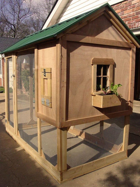 Pin On Animals Backyard chicken coop designs