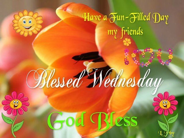 Have A Fun Filled Wednesday good morning wednesday hump day