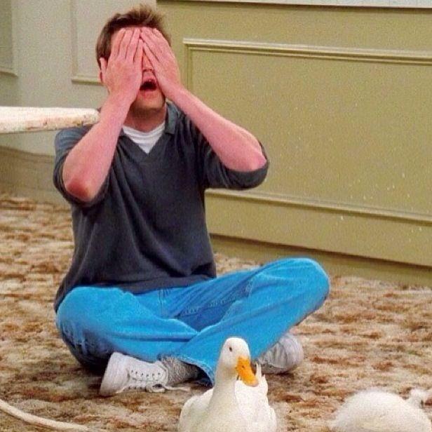 Chandler Bing Friends tv show