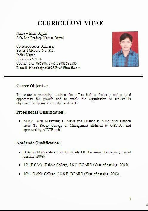 bio data application Excellent Curriculum Vitae / Resume / CV Format