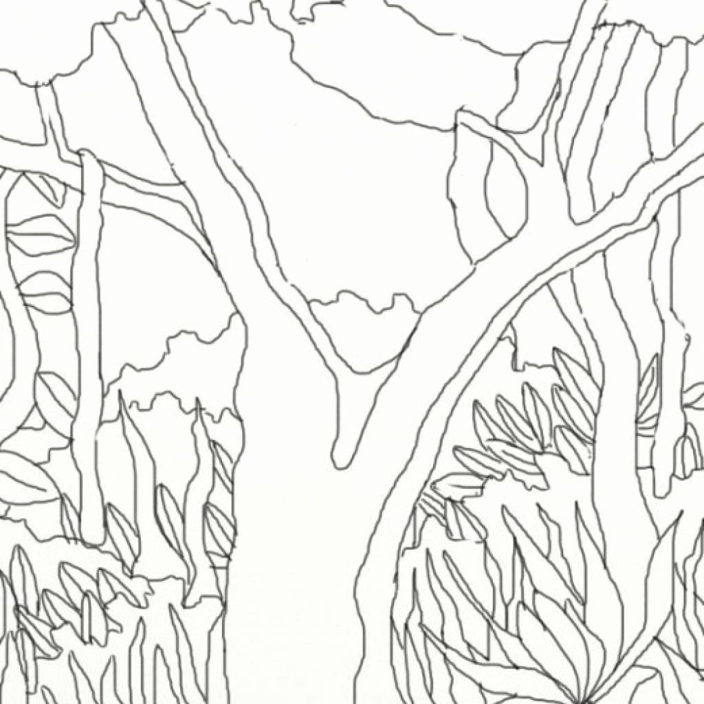 Rainforest Coloring Pages Printable Beautiful Coloring Book World Amazon Rainforest Color Zoo Animal Coloring Pages Jungle Coloring Pages Animal Coloring Books