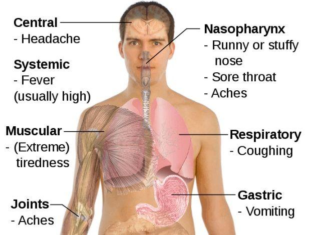 How Do You Get A Pneumonia