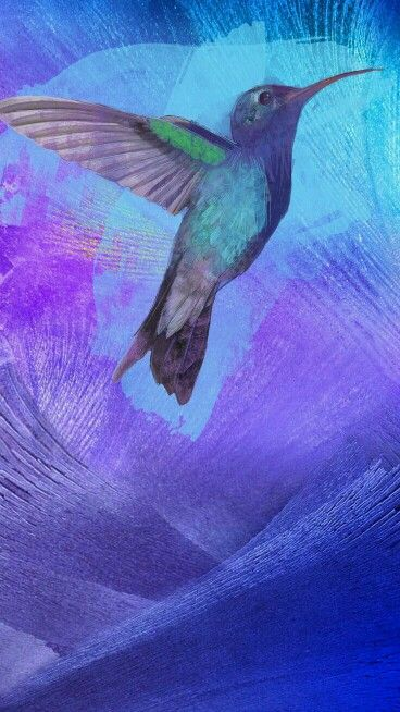 Bird Wallpapers Iphone Cute Adorable Love Beautiful Amazing Watercolor R A B