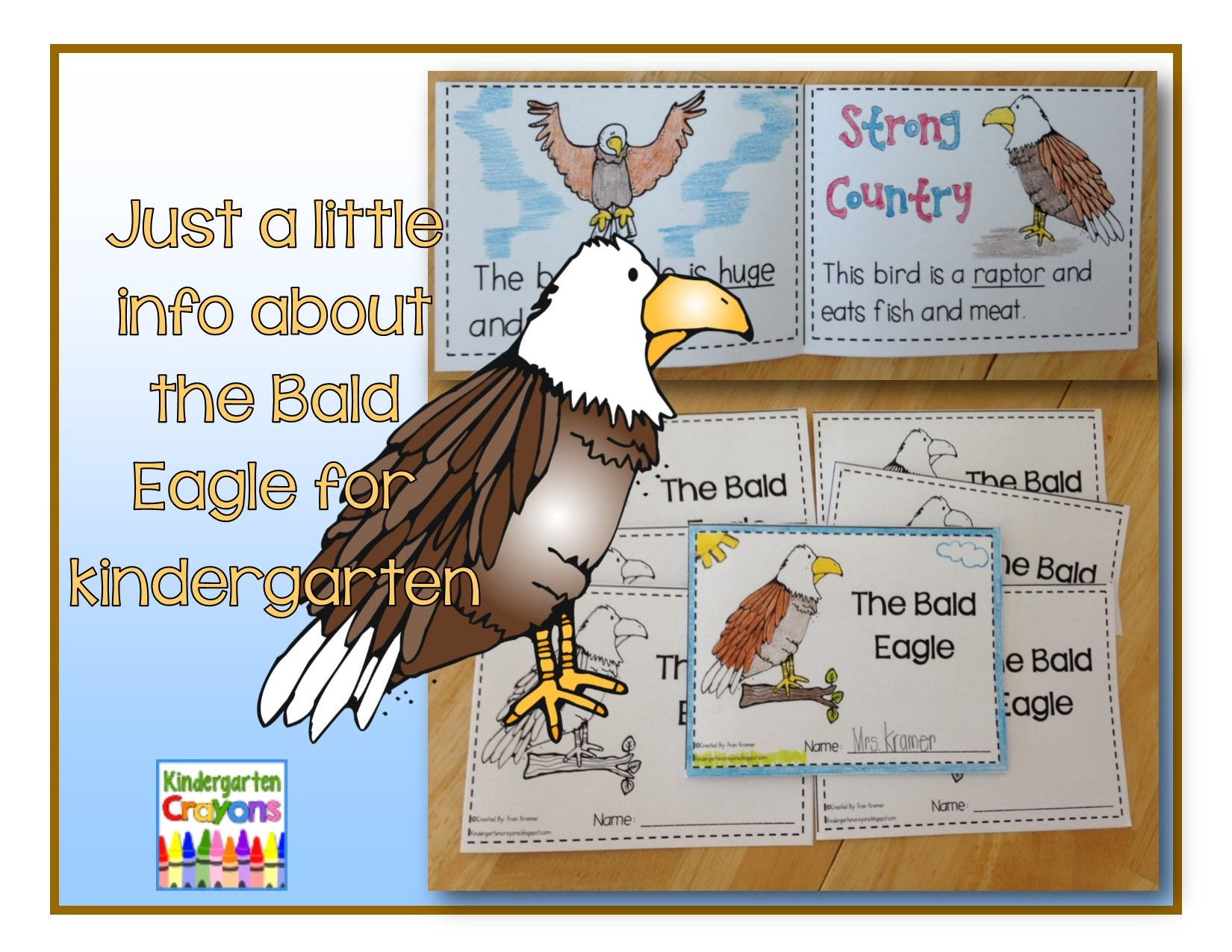 This Is A Cute Foldable For My Class On The Bald Eagle I