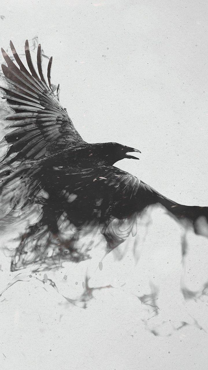 Ravens flying wallpaper - photo#43