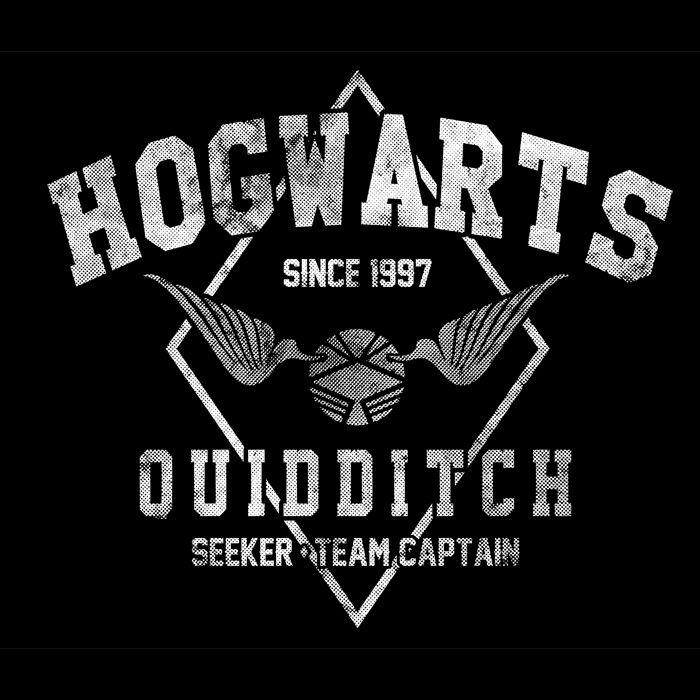 Accio! Hogwarts Quidditch - Tee Shirt Design by @Arinesart - $9  http://teehappy.com/HOGWARTS-QUIDDITCH/c565d9/?wm=10115