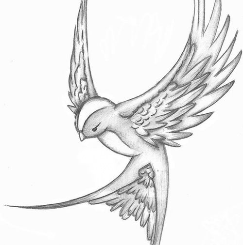 12 Inspiring Swallow And Sparrow Tattoos Sparrow Tattoo Design Sparrow Tattoo Bird Sketch