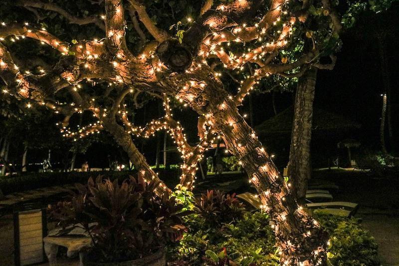 Guirlande lumineuse exterieur pour arbre