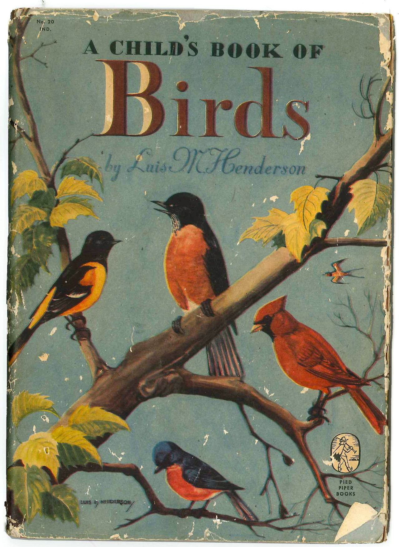 A childs book of birds 1946 childrens books