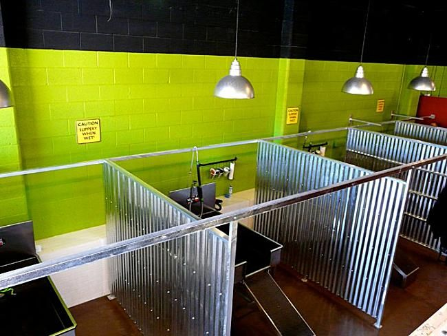 Repinned self service dog wash tub stalls at the dashing pooch repinned self service dog wash tub stalls at the dashing pooch dog wash pinterest service dogs tubs and dog solutioingenieria Image collections