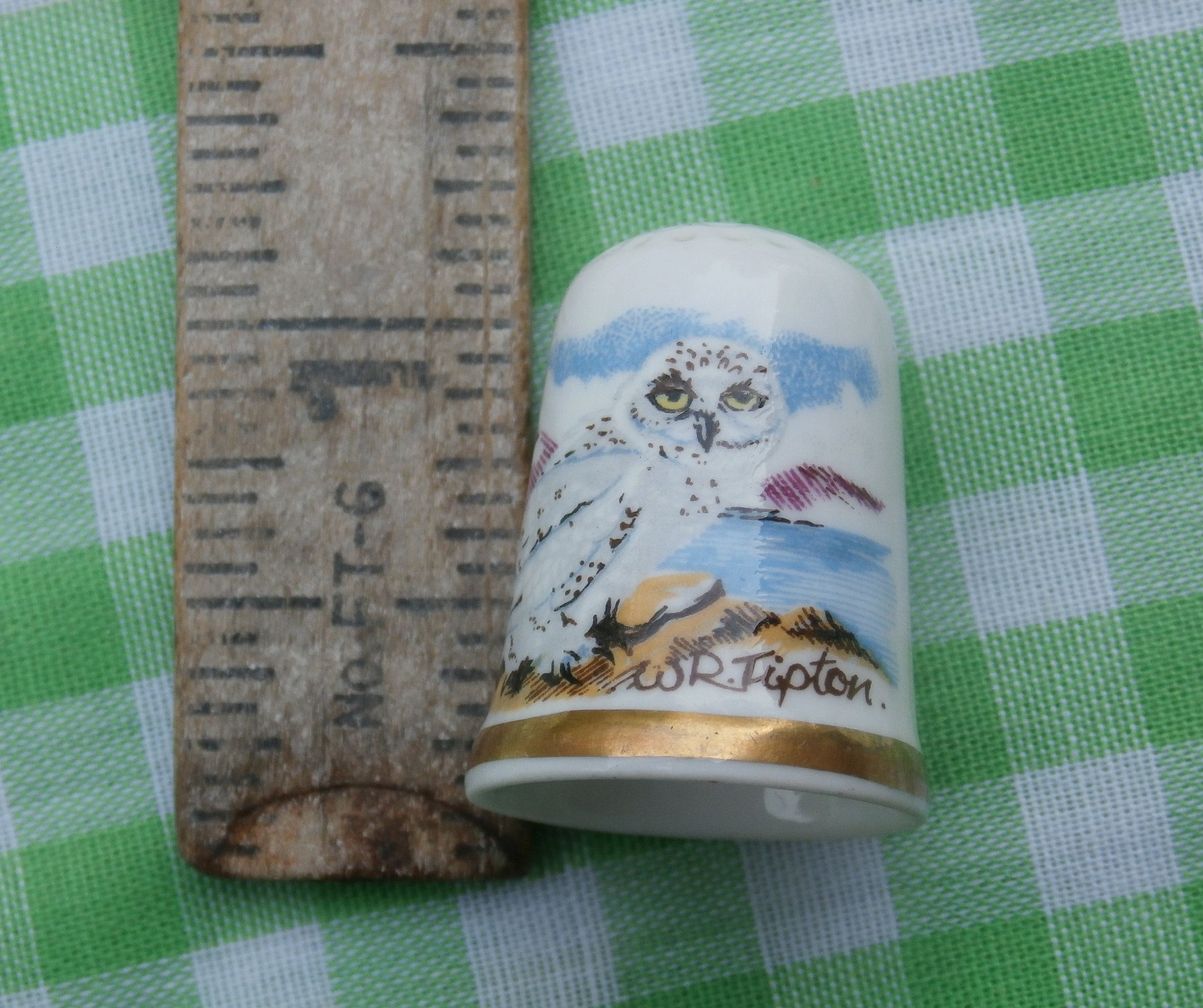 2fa5922f01bc0 Snowy Owl Thimble W.R. Tipton Caverswall Made in England Vintage English  China Collectible Bird Theme