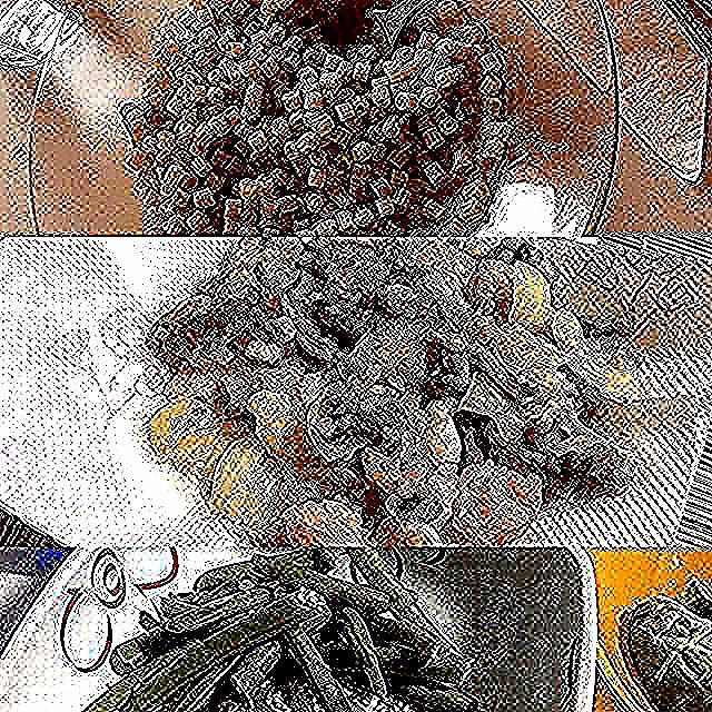 2019.3.25 #pranzo e #cena dopo  #cucinaincasa a #padova #robertasitalian #keikoswashoku #keikomme #foodie #delicious #yummy #foodporn #italia  #buono  #healthyfood #美味しい #ヘルシー #イタリア #料理 #FB #pin #lunch #dinner #昼飯 #晩飯