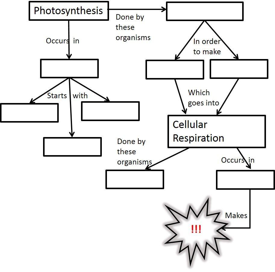cellular biology resources