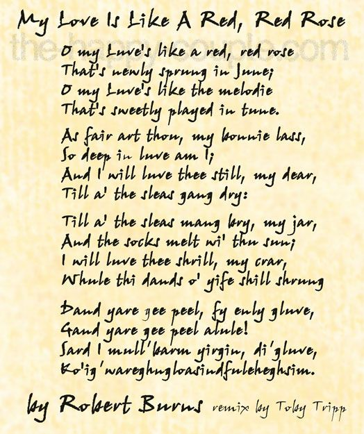 """Robert Burns' famous love poem, """"My Love is Like a Red ..."""