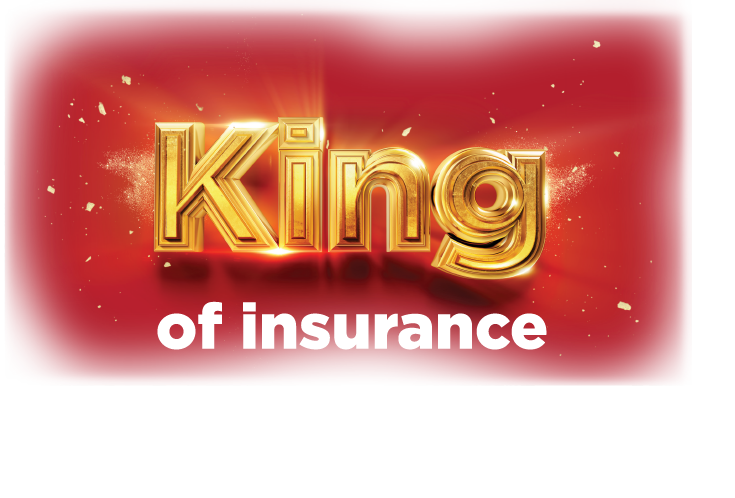 King Price Insurance Arrow Racing Insurance Quotes Car