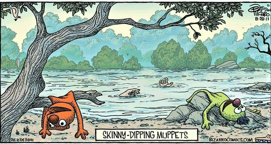 Lets Go Skinny Dipping Meme